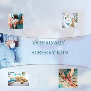Veterinary Surgical Sets